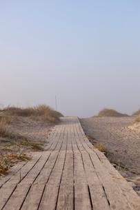 Boardwalk near the sea in Kampinge, Swedenの写真素材 [FYI02705507]
