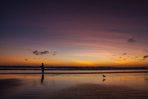 Person fishing on the beach at sunset in Broome, Australiaの写真素材 [FYI02705570]