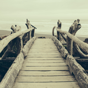 Driftwood log bridge facing Pacific Ocean near Kalaloch on the shore of Olympic National Park.の写真素材 [FYI02705589]