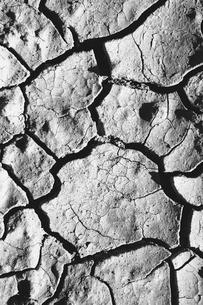 Close up of cracked earth, Black Rock Desert, Nevadaの写真素材 [FYI02705660]