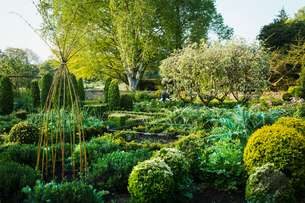 View of garden with flower beds, shrubs and trees in the background.の写真素材 [FYI02705752]