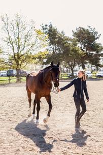 Teenage girl leading a horse in Swedenの写真素材 [FYI02705758]