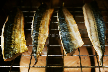Close up of Mackerel fillets on a rack in a fish smoker.の写真素材 [FYI02705855]