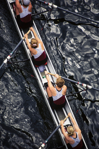 Overhead view of female crew racers rowing scull boat.の写真素材 [FYI02705982]