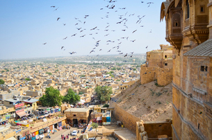 View of the city of Jaisalmer from the historic hilltop fort with large birds in the air above the mの写真素材 [FYI02706042]