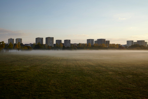 Sweden, Stockholm, Arsta, Foggy field and blocks on flats in backgroundの写真素材 [FYI02706059]