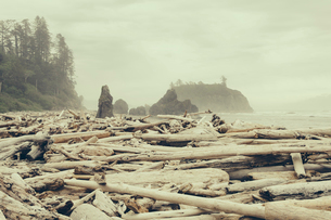 View of coastline from Ruby Beach, piles of driftwood in foreground.の写真素材 [FYI02706336]
