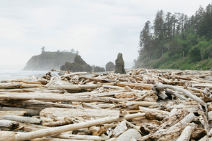 View of coastline and Ruby Beach, piles of driftwood in the foreground.の写真素材 [FYI02706349]