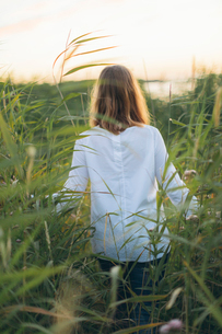 Young woman walking through a field of grass in Karlskrona, Swedenの写真素材 [FYI02706361]