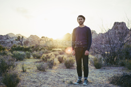 Man standing at sunset in Joshua Tree National Park, USAの写真素材 [FYI02706501]