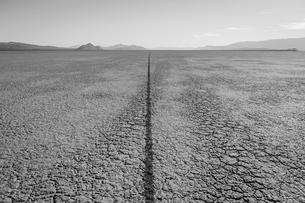 Single tire track on playa, Black Rock Desert, Nevadaの写真素材 [FYI02706552]
