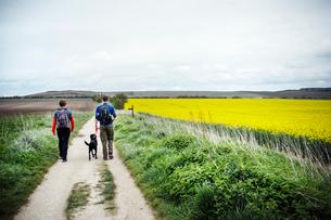 Walking along the ancient Ridgeway path through the county of Berkshire.の写真素材 [FYI02706620]