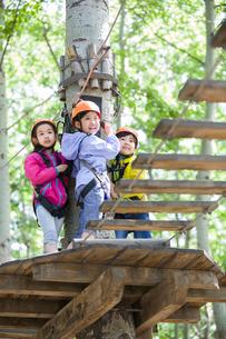 Happy children playing in tree top adventure parkの写真素材 [FYI02706654]