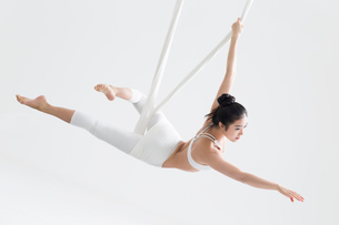 Young Chinese woman practicing aerial yogaの写真素材 [FYI02706684]