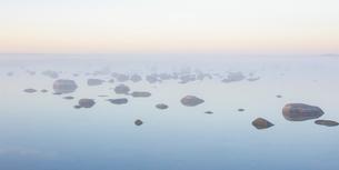Sweden, Oland, Grankullavik, Trollskogen, seascape in sunrise fogの写真素材 [FYI02706722]