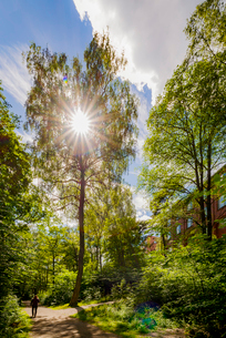 Sweden, Stockholm, Ostermalm, Park by Kungliga Tekniska hogskolan (Royal Institute of Technology)の写真素材 [FYI02706796]