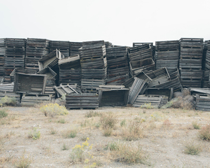 Pile of old and discarded wooden fruit crates, boxes for apple harvestの写真素材 [FYI02706837]