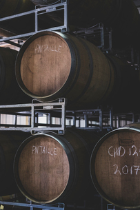 Oak wine barrels in a winery.の写真素材 [FYI02706915]