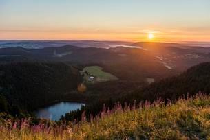 Sunrise, view east towards Feldsee from Feldberg, Blackの写真素材 [FYI02706986]