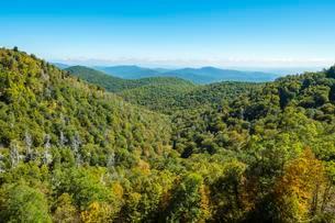 Blue Ridge Mountains from the Blue Ridge Parkway, Haywoodの写真素材 [FYI02707042]
