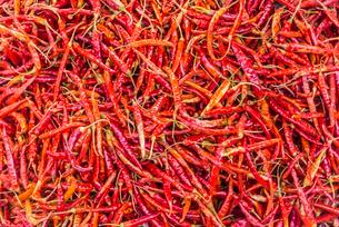 Red chili peppers at a market, Nampan, Inle Lake, Shanの写真素材 [FYI02707149]