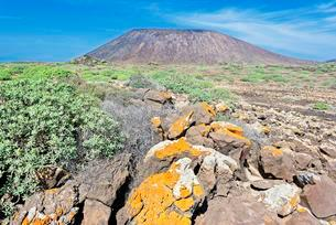 Volcanic landscape, Lobos Island, Fuerteventura, Canaryの写真素材 [FYI02707153]