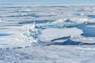 Pack ice, Arctic Ocean, Spitsbergen, Svalbard archipelagoの写真素材 [FYI02707251]