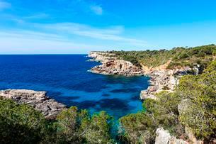 Rocky coast between Cala de s'Almonia and Cap de Salinesの写真素材 [FYI02707287]