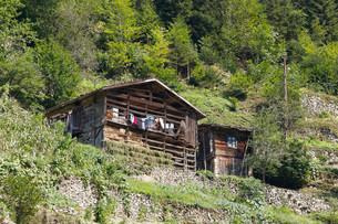 Traditional wooden house near Uzungol, Trabzon Provinceの写真素材 [FYI02707322]
