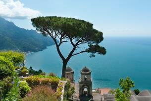 View of coast and sea, pine tree and church, Chiesaの写真素材 [FYI02707323]