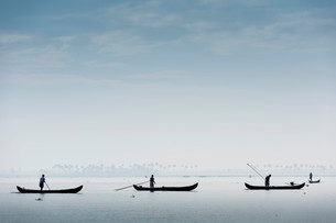 Cockle pickers with their boats, Vembanad Lake, Keralaの写真素材 [FYI02707363]