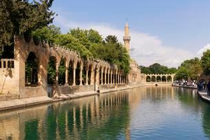 Pond of Abraham with Rizvaniye Mosque, Balikligol pondの写真素材 [FYI02707385]