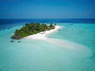 Tourists on uninhabited palm island, sandy beach allの写真素材 [FYI02707396]