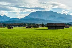 Meadow with hay huts, behind Arnspitzgruppe groupの写真素材 [FYI02707406]