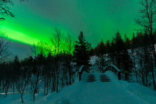 Aurora in Finlandの写真素材 [FYI02707419]