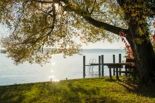 Bridge with ladder into the lake, Lake Constance in autumnの写真素材 [FYI02707421]