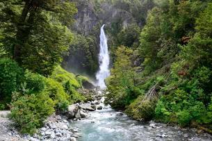 Waterfall between dense rainforest vegetation, Valleの写真素材 [FYI02707440]
