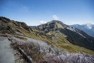 Mountain walkway of Hehuan Mountain Taiwanの写真素材 [FYI02707493]