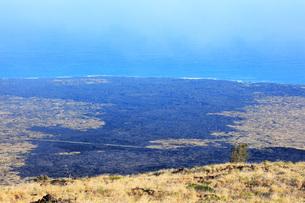 ハワイ島 キラウエア火山チェーン・オブ・クレーターズ・ロードからのホーレイ パリと海の写真素材 [FYI02707549]