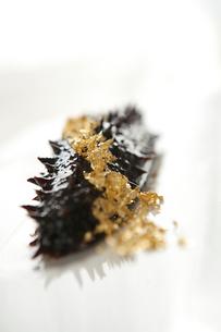 Golden sea cucumberの写真素材 [FYI02707581]