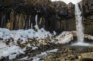 Svartifoss in Skaftafell National Park,Icelandの写真素材 [FYI02707741]