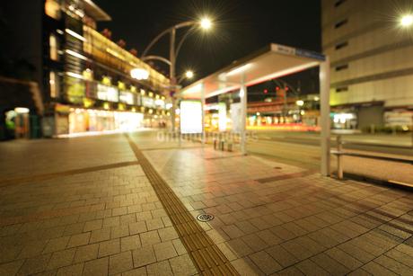 深夜の上野公園山下の石畳の歩道の写真素材 [FYI02707972]