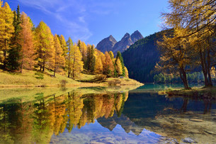 Autumnally coloured larch trees reflected in lake Lei daの写真素材 [FYI02708371]