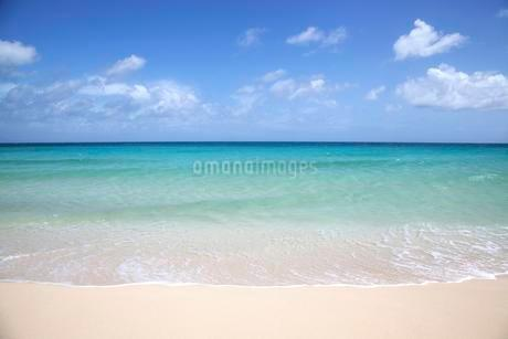 Sand beach, turquoise sea with clouds, Playa Bajo Negroの写真素材 [FYI02708390]