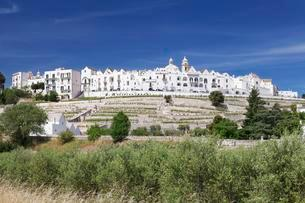 Locorotondo, Valle d'Itria, Bari Province, Apuliaの写真素材 [FYI02708512]