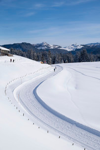 Cross-country ski run, Winklmoosalm alp, Reit im Winklの写真素材 [FYI02708523]
