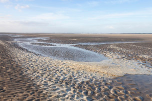 Low tide in the Lower Saxon Wadden Sea National Parkの写真素材 [FYI02708597]