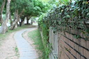 National Taiwan University;Taipeiの写真素材 [FYI02708719]