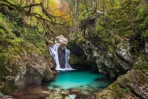Waterfall at the autumnal Lepenjica, Soca Valley, Bovecの写真素材 [FYI02708739]