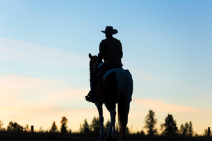 Cowboy riding on horseback in a Prairie landscape at sunset.の写真素材 [FYI02708776]
